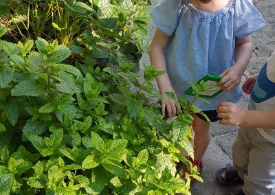 kinderen-planten